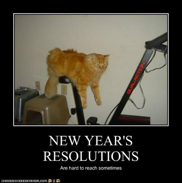New years day funny pictures